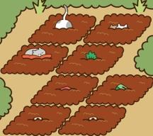 猫咪田园哪种猫最值钱,来看看你有没有猜对吧!