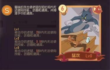 猫和老鼠怎么使用知识卡?知识卡有什么作用?